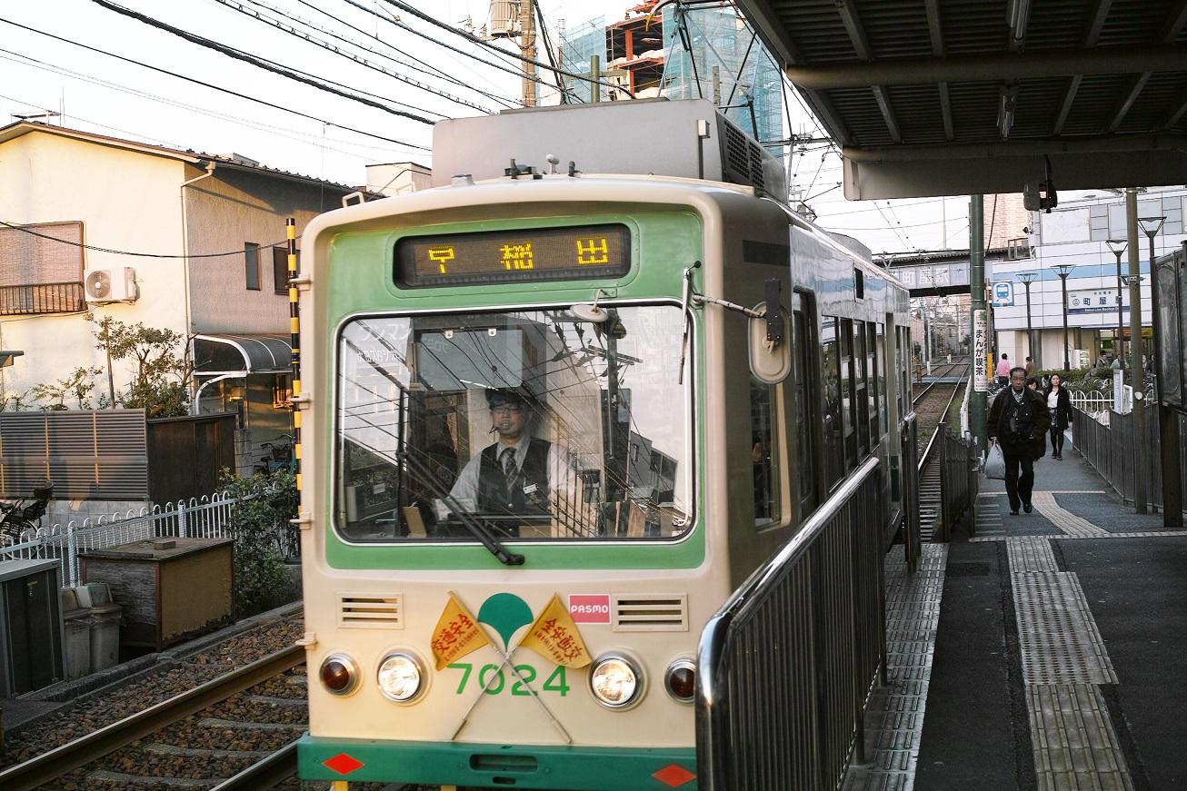 Sdim1261